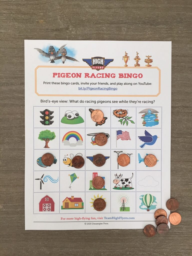 Photo of a Pigeon Racing Bingo game card for kids