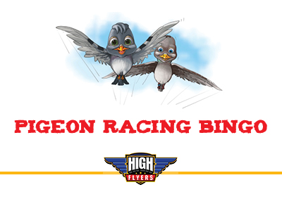 Activity card for Pigeon Racing Bingo for Kids activity